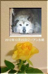20121225ジーアン.jpg